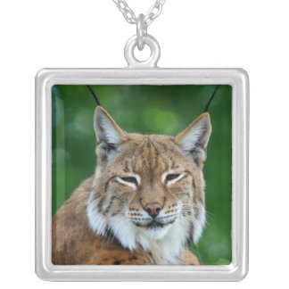 Bobcat or lynx beautiful photo pendant, necklace