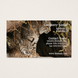 Bobcat Photo Business Card