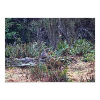 Bobcat Photo Card
