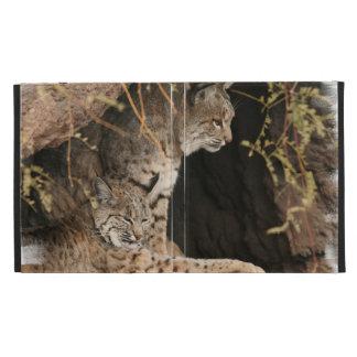 Bobcat Photo iPad Folio Case