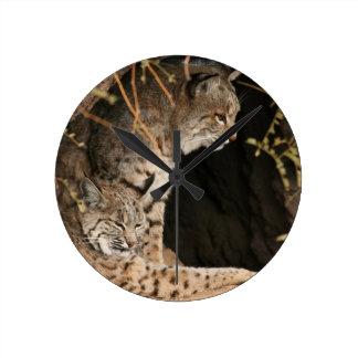 Bobcat Photo Clock