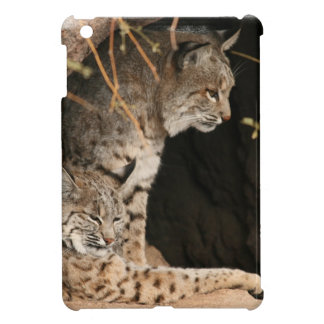 Bobcat Photo iPad Mini Covers