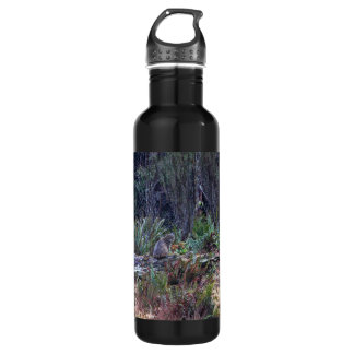 Bobcat Photo Stainless Steel Water Bottle