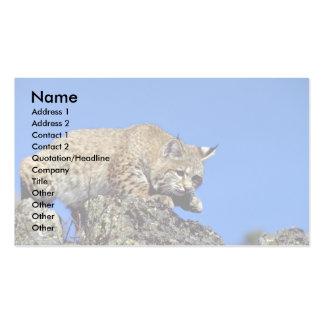 Bobcat skylined business card templates
