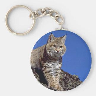 Bobcat skylined keychain