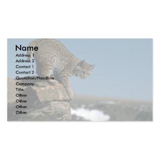 Bobcat skylined on colorful rocks business card
