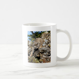 Bobcat sneaking down the cliff coffee mug