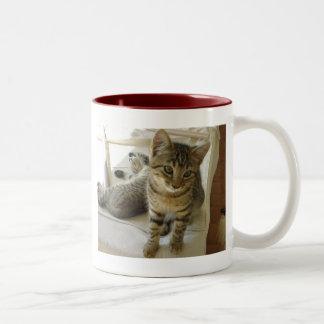 BobCat Two-Tone Coffee Mug