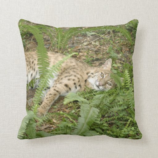 BobcatBCR007 Pillow