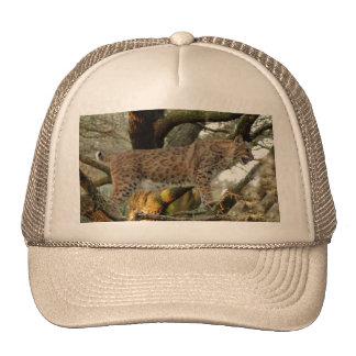 BobcatBCR008 Trucker Hat