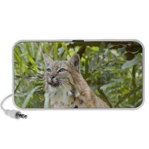 BobcatBCR012 Notebook Speaker