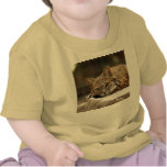 BobcatBCR018 Camiseta