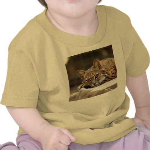 BobcatBCR018 Shirts