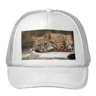 BobcatBCR018 Trucker Hat