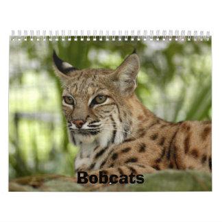 BobcatBCR032, linces Calendario