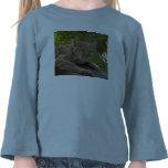 BobcatBCR042 Camiseta