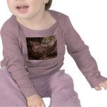 BobcatBCR048 Camisetas