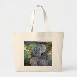 bobcats bags