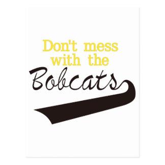 Bobcats Dont Mess Postcard