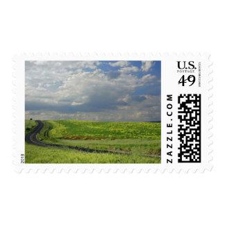 Bobina del camino a través de campos agrícolas, timbre postal