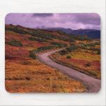 Bobina del camino a través de las colinas en el na alfombrilla de raton