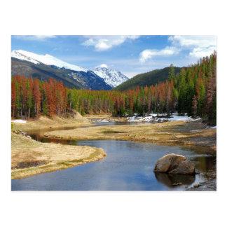 Bobina el río Colorado con las montañas y los pino Tarjeta Postal