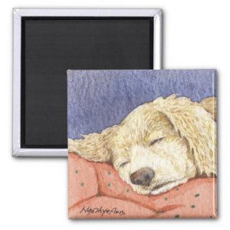 Bobo Sleeping Magnet
