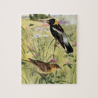 Bobolinks, Daisies and Pink Clover Jigsaw Puzzle
