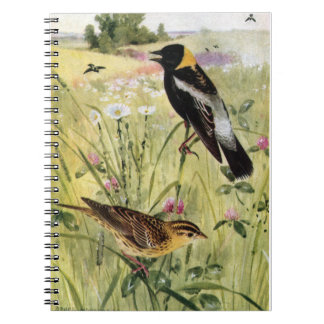 Bobolinks, Daisies and Pink Clover Spiral Notebook