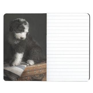 Bobtail puppy portrait in studio journal