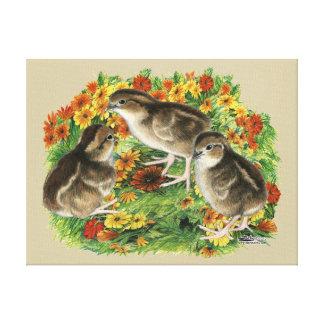 Bobwhite Garden Chicks Canvas Print