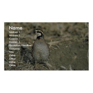 Bobwhite Quail Business Card