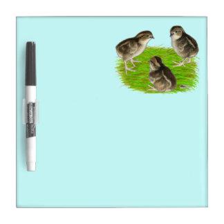 Bobwhite Quail Chicks Dry-Erase Boards