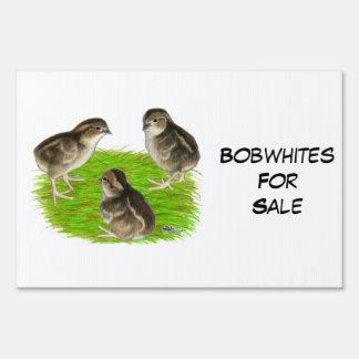 Bobwhite Quail Chicks Lawn Sign