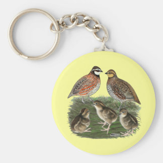 Bobwhite Quail Family Key Chain