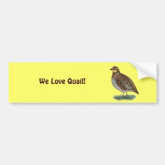 Bobwhite Quail Hen Car Bumper Sticker