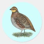 Bobwhite Quail Hen Classic Round Sticker
