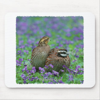 Bobwhite Quail Photography Mouse Pad