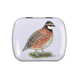 Bobwhite Quail Rooster Jelly Belly Candy Tin