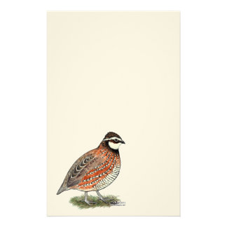 Bobwhite Quail Rooster Stationery