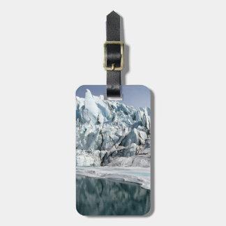 Boca Alaska del glaciar de Matanuska Etiquetas Maletas
