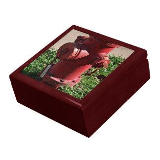 Boca de incendios caja de joyas