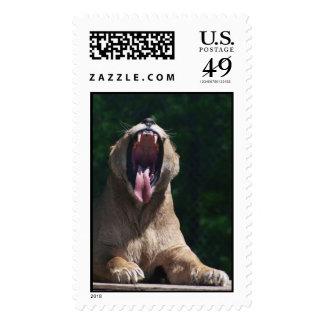 boca de la leona sello