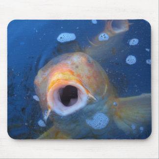 Boca de los pescados mouse pad