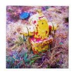 Boca de riego colorida teja cerámica