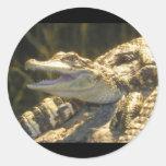 Boca del cocodrilo americano abierta etiqueta redonda