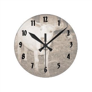 Boca doeling de la cabra de la sepia de Saanen abi Reloj