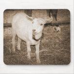 Boca doeling de la cabra de la sepia de Saanen abi Alfombrillas De Raton