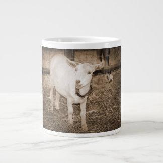 Boca doeling de la cabra de la sepia de Saanen abi Taza Grande