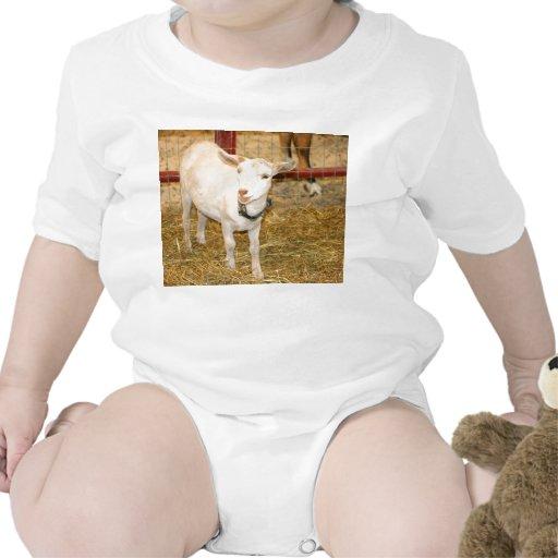 Boca doeling de la cabra de Saanen abierta Trajes De Bebé